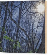 Wintersun Wood Print