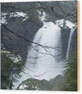 Wintertime Shahalee Falls Obscured By Branches Wood Print