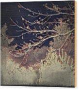 Wintervwoods Wood Print
