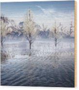 Wintery Coast Wood Print