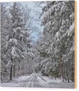 Wintery Country Road Wood Print
