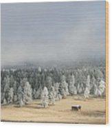 Wintery Mountain Ranch Wood Print