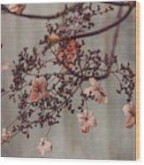 Wintry Elegance Wood Print