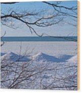 Wintry Lakeshore Wood Print