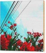 Wire Flowers Wood Print