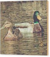 Wisconsin Ducks Wood Print