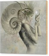 Wish On A Pearl Wood Print