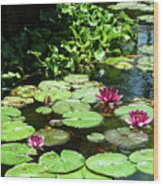 Wishes Among The Water Lilies Wood Print
