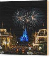 Wishes At Magic Kingdom Wood Print