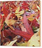Wishing For Fall Wood Print