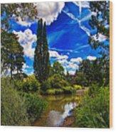 Wisley Gardens Wood Print