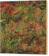Wisps Of Autumn Wood Print