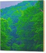 Wissahickon Creek Wood Print