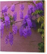 Wisteria At Sunset Wood Print
