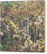 Witch Hazel Forest Wood Print