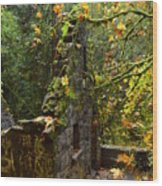 Witches Castle Wood Print
