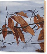 With Autumn's Passing Wood Print