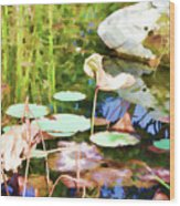 Withered Lotus In The Pond 2 Wood Print