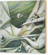 Wl1989dc002 Planeta De La Paz No.2 26 X 37.9 Wood Print