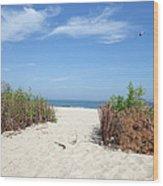 Wladyslawowo White Sand Beach At Baltic Sea Wood Print