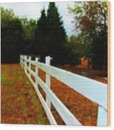 Wodden Fence  Wood Print