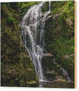 Wodospad Kamienczyka Wood Print
