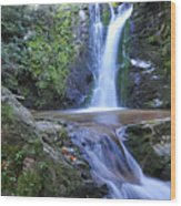 Wolf Creek Falls Wood Print