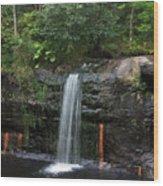 Wolf Creek Falls Wood Print