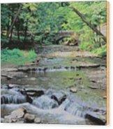 Wolf Creek Wood Print