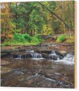 Wolf Creek Wood Print by Mark Papke
