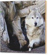 Wolf Den 1 Wood Print