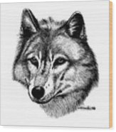 Wolf In Pencil Wood Print