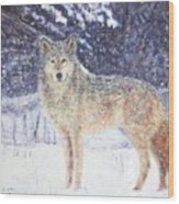 Wolf Of The North Wood Print