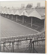 Wolverhampton - Molineux - Molineux Street Stand 1- Bw - Leitch - September 1968 Wood Print