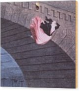 Woman Committing Suicide By Jumping Off Of A Bridge Wood Print