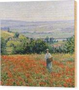 Woman In A Poppy Field Wood Print