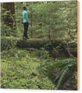 Woman On A Moss Covered Log In Olympic National Park Wood Print