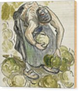 Woman Picking Cabbage Wood Print