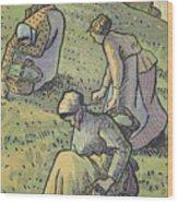 Women Gathering Mushrooms Wood Print