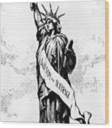 Womens Rights Cartoon, 1915 Wood Print