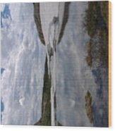 Woming Snow'y Rangr Wood Print