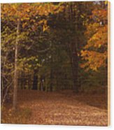 Wonderful Fall Colors Wood Print by Robert  Torkomian