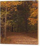 Wonderful Fall Colors Wood Print by Robert  Torkomian