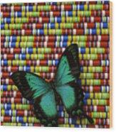 Wonderful Green Butterfly Wood Print