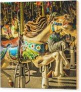 Wonderful Horse Ride Wood Print