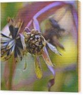 Wonderful Weeds Wood Print