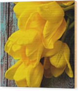 Wonderful Yellow Tulips With Dew Wood Print