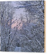 Wonderland Road Wood Print