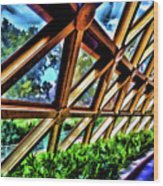 Wonders Of Life Wood Print
