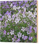 Wood Cranesbill Field Wood Print